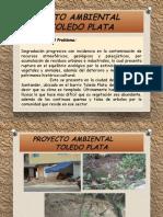 Producto 2-Proyecto Ambiental