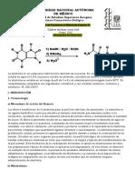 Monografía Alantoína.docx