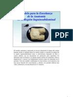 Modelo de Ensenanza Conducto Inguinal2