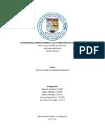 Proyecto de Intraemprendimiento.pdf