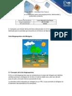 Revision Teorica Ciclo Dl Nitrogeno