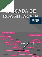 coagulacion y eicosanoides