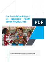indonesia health sector