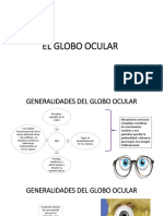 EL GLOBO OCULAR 1.pdf