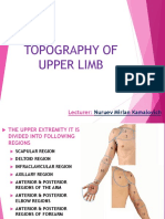 Topography of UPPER LIMB