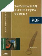 Zarub_lit-ra_20_v_pod_red_Tolmacheva.pdf