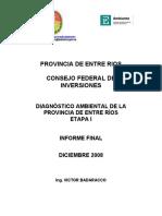 Diagnostico_Ambiental-web.pdf
