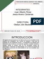 diapositivasseminario-130710113227-phpapp01