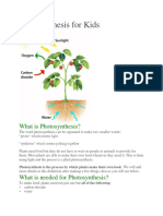 Photosynthesis n Cellular Respiration