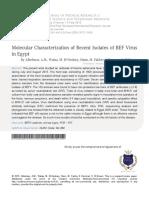 BEF 5.pdf