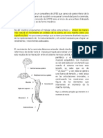 Sistemas de control protesis