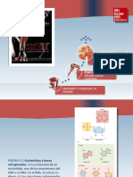 Saladin_Anatomia_6a_diapositivas_c04_GENETICA.ppt