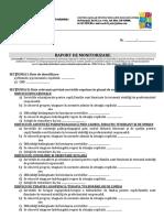 Anexa 19 Raport Monitorizare Semestrial -Anual