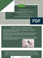 EXPOSICION ROXANA CARDIOVASCULARES.pptx