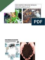 Pengolahan Sampah Organik Dengan Maggot