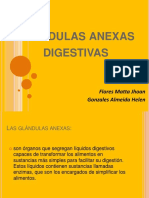 Glandulas Anexas Digestivas