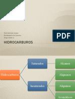 Presentacion hidrocarburos