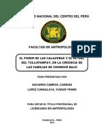 Navarro Campos-Lopez Cangalaya.pdf