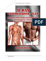 31 Day Program