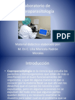 Laboratorio de Coproparasitología2015.pptx