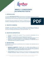 Terminos y condicione RutaTIC