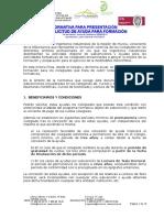 Normativa Ayudas COIIRM Aprob Julio 2011