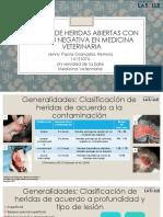 Terapia Con Presión Negativa en Heridas de Espesor1