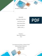 Descripcion Modulos RIS Grupo 154023 4