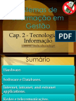 Slides capitulo 2