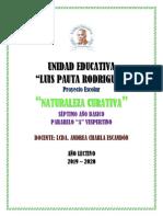 Proyectos Escolares 2019