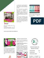 folleto prevenion de embarazo a temprana edad.docx