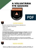 Força Voluntaria Norte Gaucho