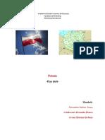 Polonia Fișa de Țară