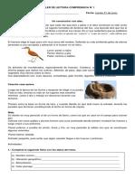 319917904-4-BAS-TALLER-DE-LECTURA-COMPRENSIVA-N.docx