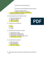 Cuestionario de Ginecología B8
