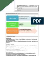 Formato Estudio Organizacional (1)