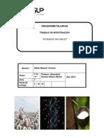 Trabajo de Investigacion Polimeros Naturales