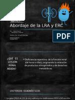 1540775087202_Abordaje de La LRA y ERC