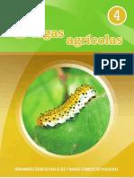 Plagas agrícolas