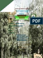 BIOELEMENTOS INFORME-N2-BIOLOGÍA.docx