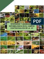 Abundancia Entomologica Borrador 2