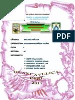 Celulas Procariotas y Eucaritasinforme-n6-Biología