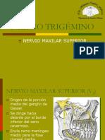 20 Nervio Trigémino. Maxilar Superior