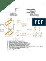 Biochemistry Handout 2019