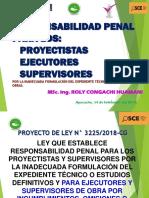 RESPONSABILIDAD PENAL DE CONSULTORES Y EJECUTORES 2019