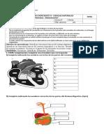 evaluacion  coeficiente 2 quinto 2019.doc