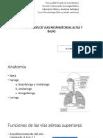 Infecciones de Vias Respiratorias Altas y Bajas_20191005053305
