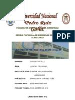 Informe de Practicas -Final