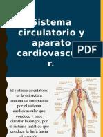 Sistema Circulatorio Expo