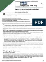 Princípios do direito processual do trabalho_ explanação e relevância - Jus.com.br _ Jus Navigandi
